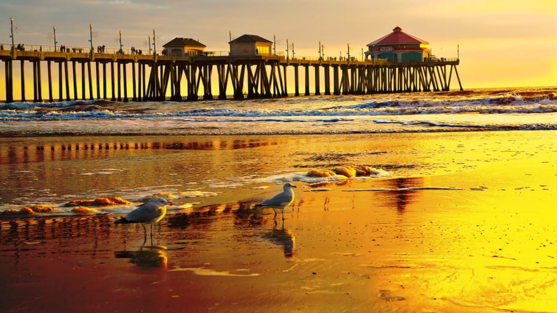 laundry pickup and delivery in huntington beach