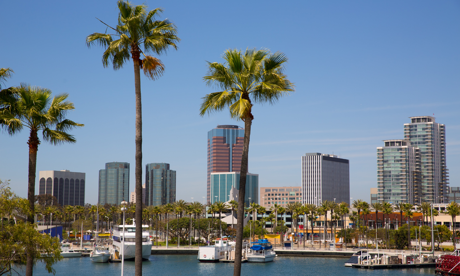 Local Laundry Delivery Service in Long Beach